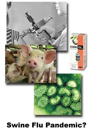 swine_flu-04-25-09