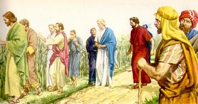 JesucristoEspigasEnSabado