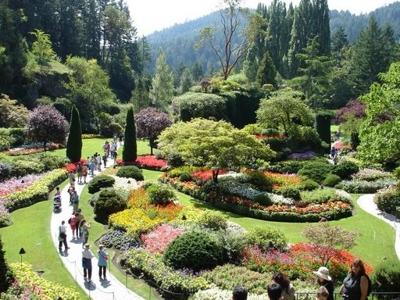 Una de cada cinco plantas del planeta corre peligro de for Plantas ornamentales para parques